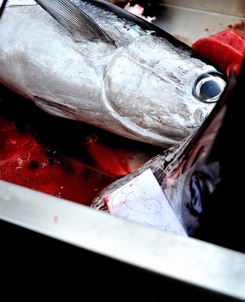 Kill fish! by Peppedam