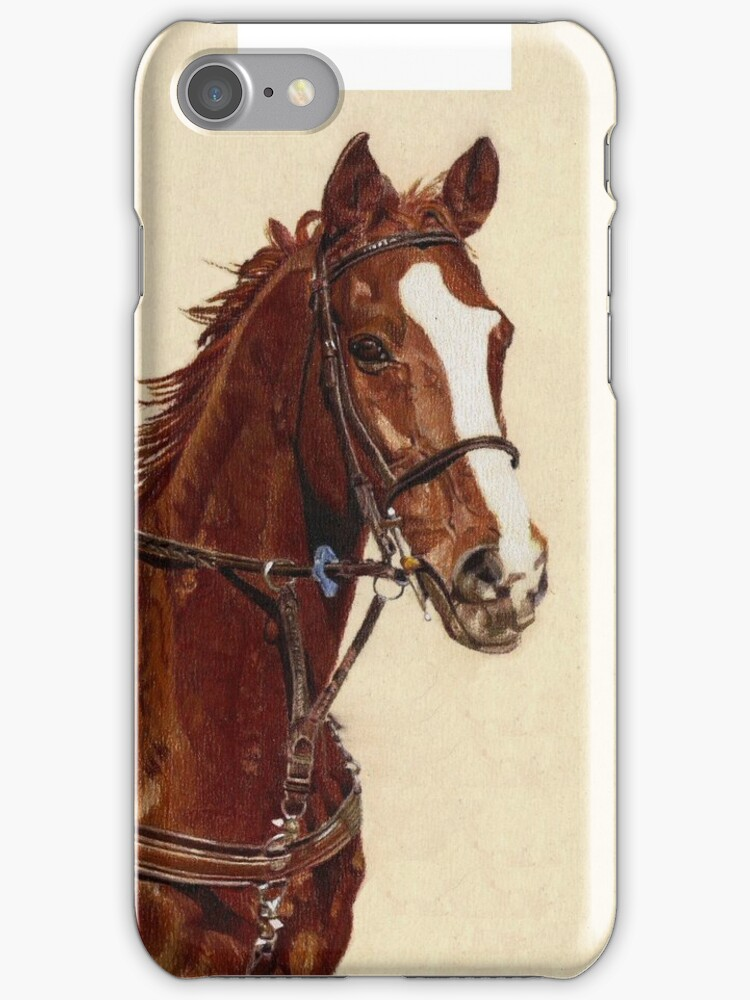 Thoroughbred iPhone and iPod Cases by Patricia Barmatz