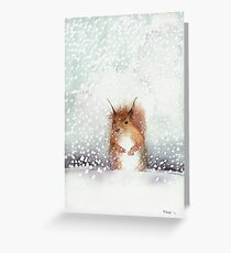 Red Squirrel in the Snow, or, Who Stole My Nuts? Greeting Card