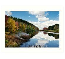 Beautiful Autumn Reflection Landscape Art Print