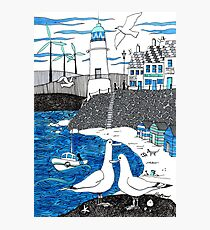 Seaside seagulls from Dover Photographic Print