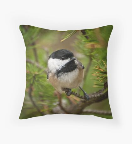 Black Capped Chickadee on Pine Throw Pillow