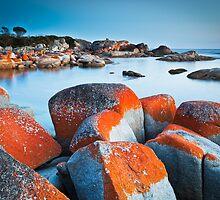 Binalong Bay (II), Bay of Fires, Tasmania by Matthew Stewart