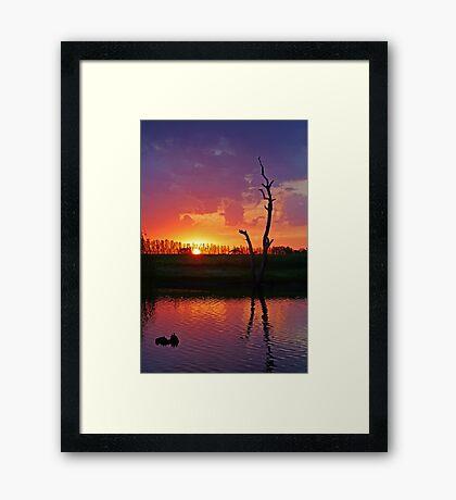 Sunset at Elmore Framed Print