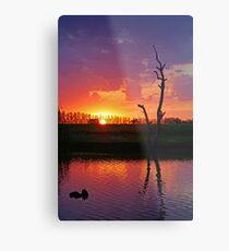 Sunset at Elmore Metal Print