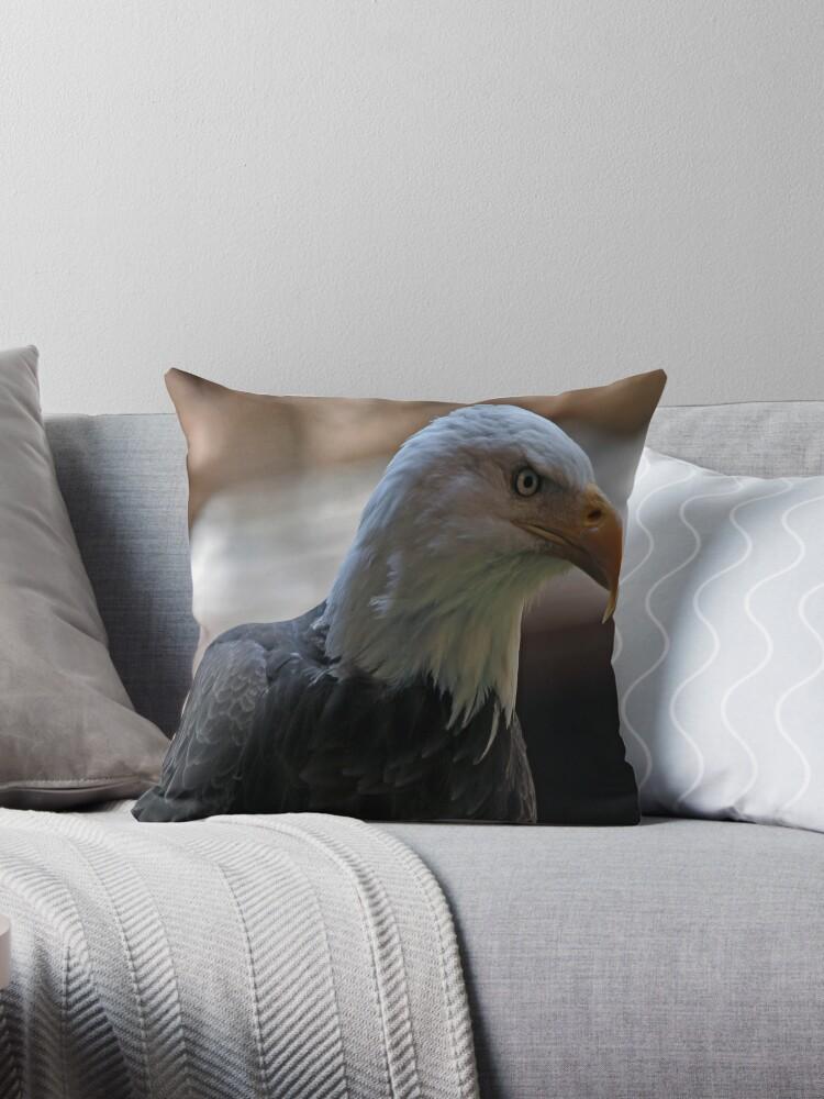 Bald Eagle by Judson Joyce