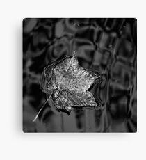 Leaf Well Alone Canvas Print