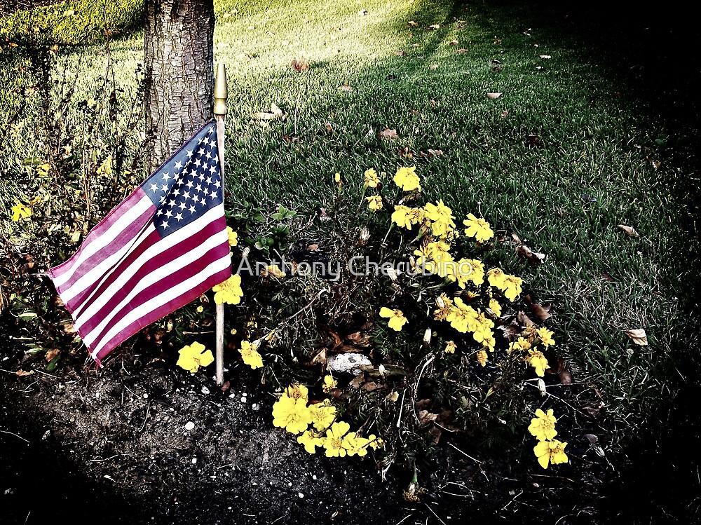 """Veterans Day 11-11-11"" by Anthony Cherubino"