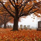 Autumn in the graveyard5 by KerrieLynnPhoto