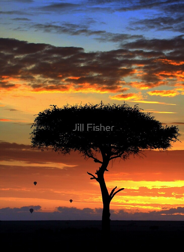 Morning Has Broken by Jill Fisher