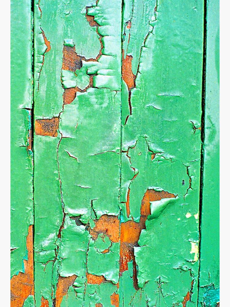 """""""The Green Door"""" by michellelee"""