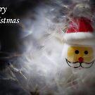 Snowflake Santa - Merry Christmas card by Ulla Jensen