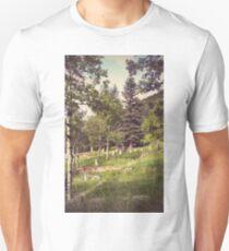 Idaho Springs Cemetery T-Shirt