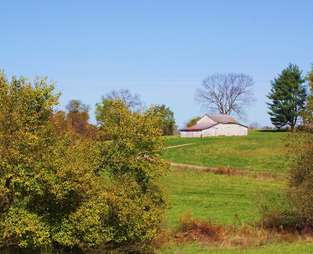 AN OLD INDIANA BARN IN A FIELD by Pauline Evans