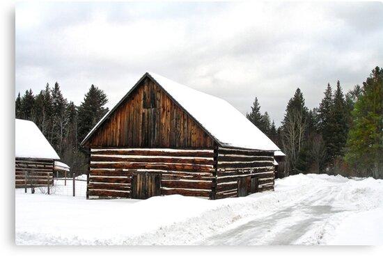 Pioneer Barn - Winter by Lynda   McDonald