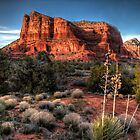 Cliffscape by Bob Larson