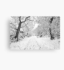 Footprints in the Snow Canvas Print