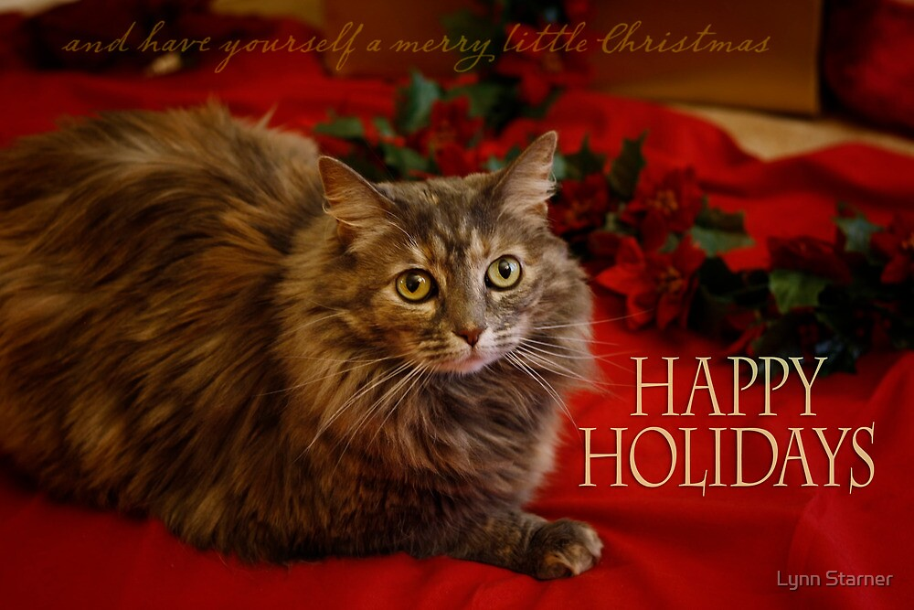 Happy Holidays by Lynn Starner