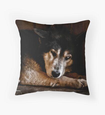 Don't disturb me Throw Pillow