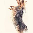 Dancing Yorkie Terrier by susan stone