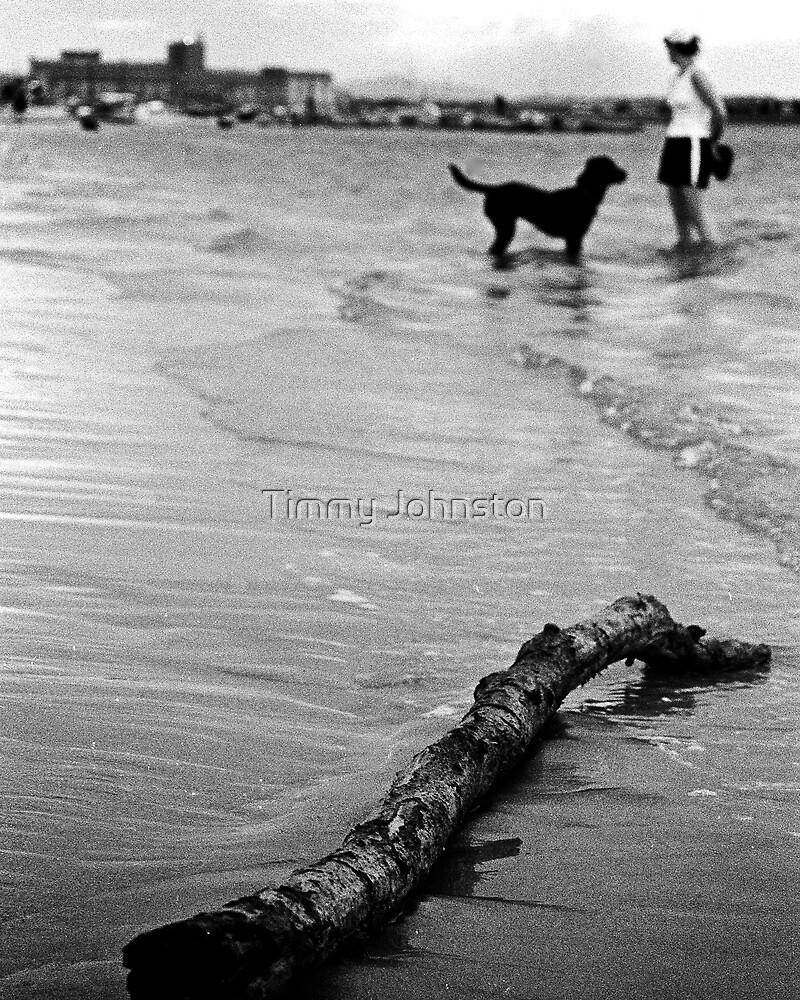 Dog Beach by Timmy Johnston