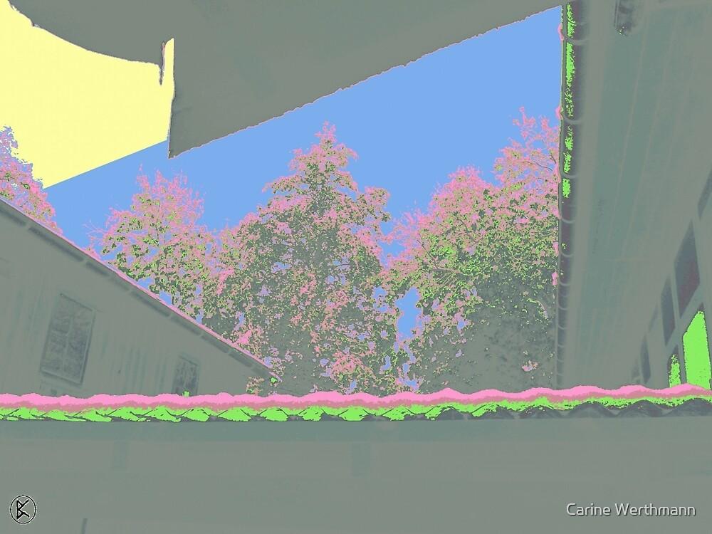 Trees and Sky by Carine Werthmann