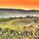 Tuscan Sky by Bruce Taylor