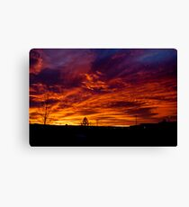 Nature's Canvas Canvas Print
