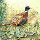 Pheasants Nesting by clotheslineart
