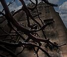 Night Tower by Jessica Liatys