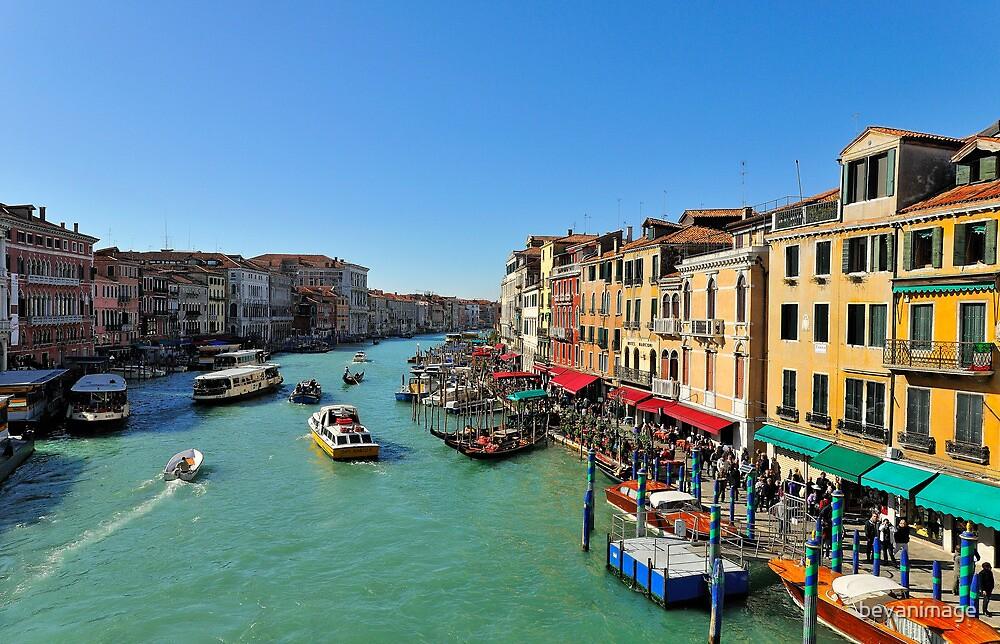 Rialto View, Venice by bevanimage