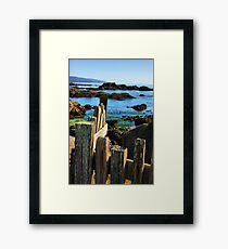 Sonoma Coast Framed Print