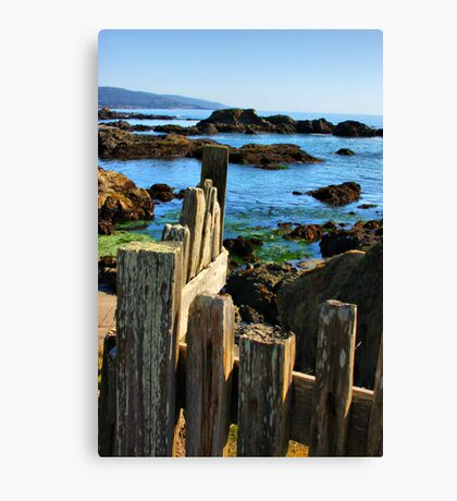 Sonoma Coast Canvas Print