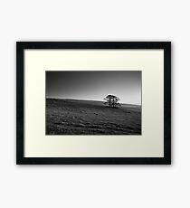 Henside Copse 02 - Yorkshire Dales, UK Framed Print