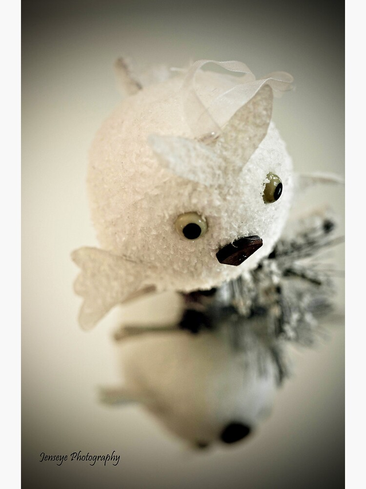 Snow Owl by jenseye