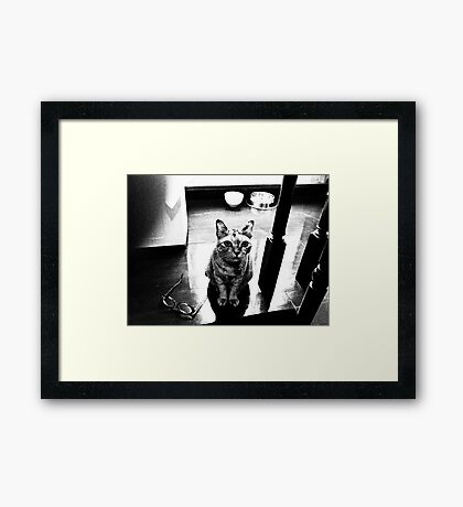 Ok, you understood this is the flood time, watch my glasses and your stuff..grandma fuzzy! mow...On 2 Featured Works Framed Print