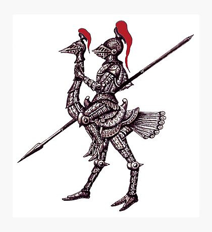 Knight on Ostrich surreal black and white pen ink drawing Photographic Print