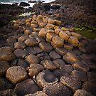 Hexagon Pathway by Inge Johnsson