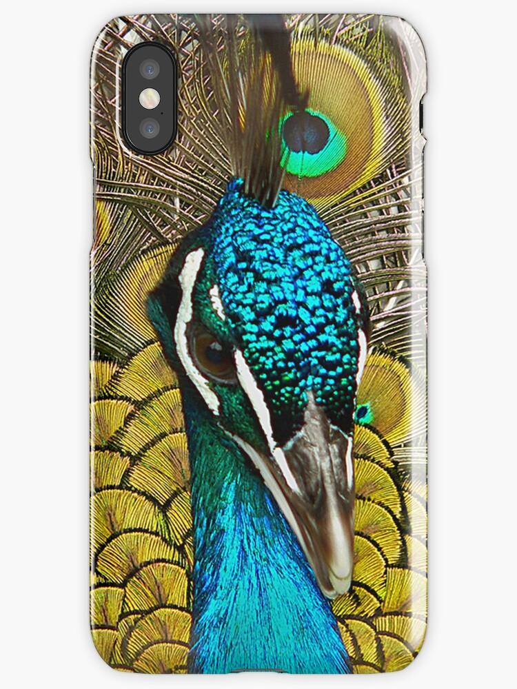 Peacock Pretty Proud by DeerPhotoArts