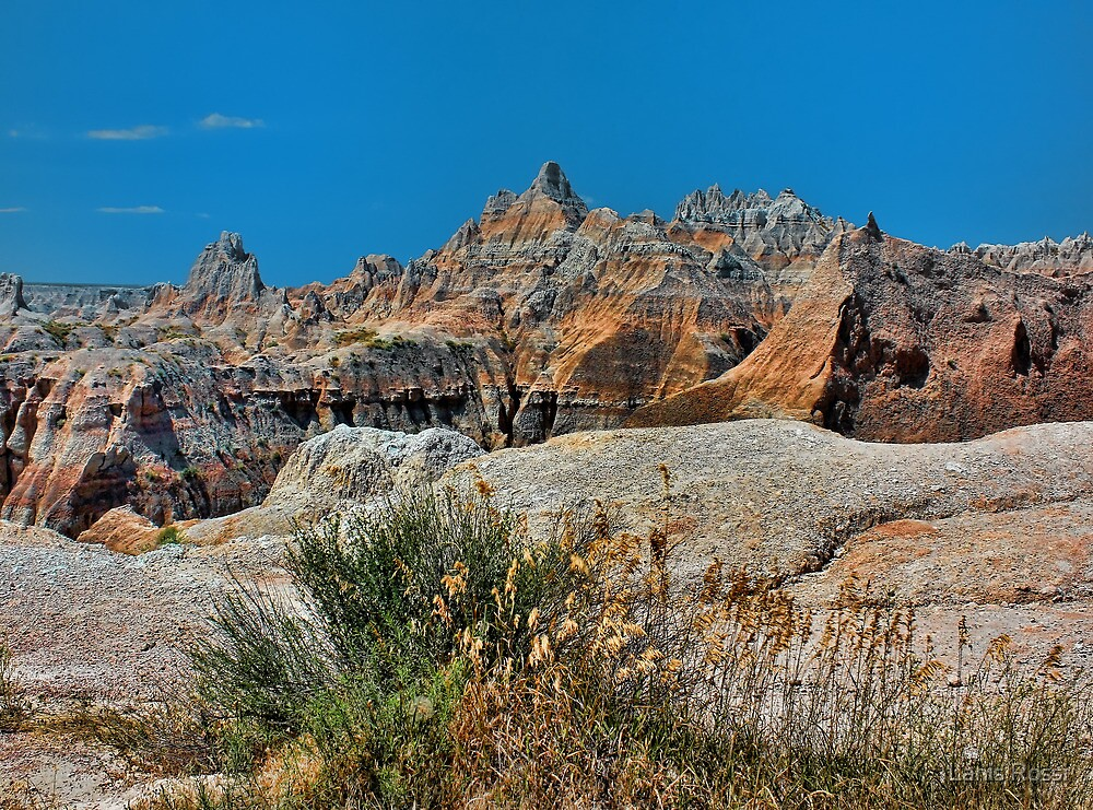 Badlands National Park by Lanis Rossi