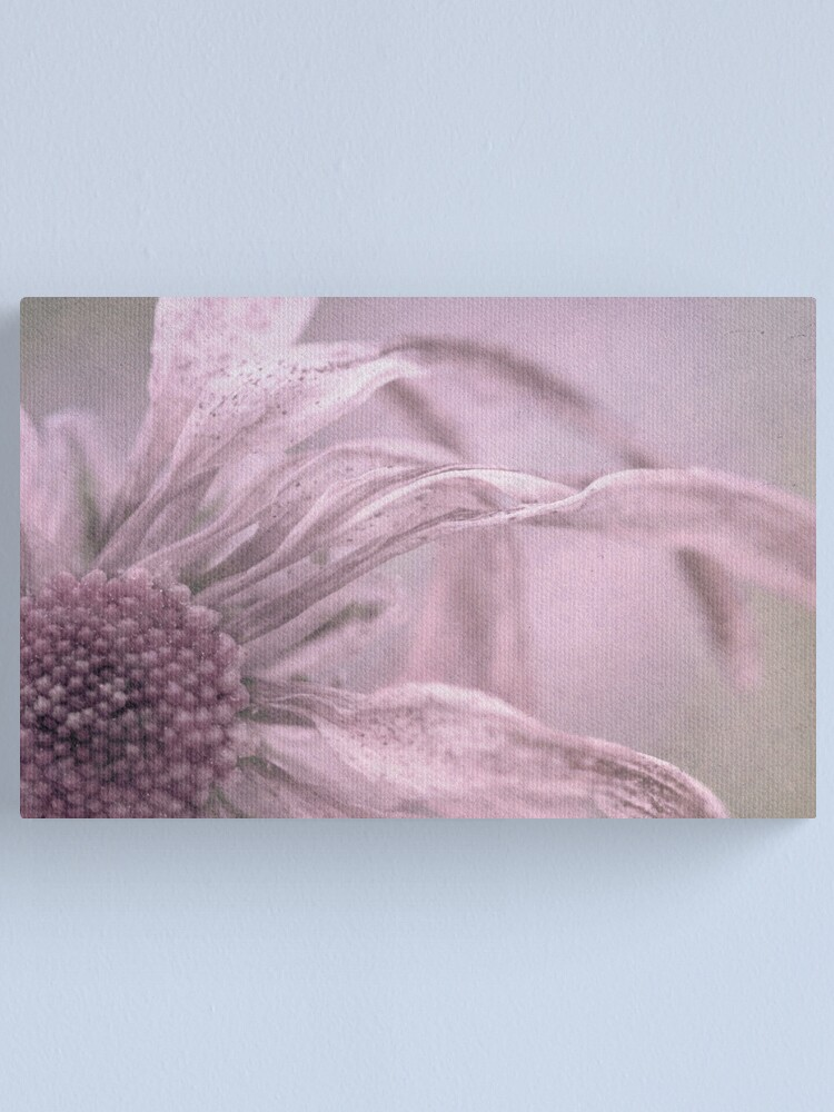 Alternate view of Freckles Canvas Print