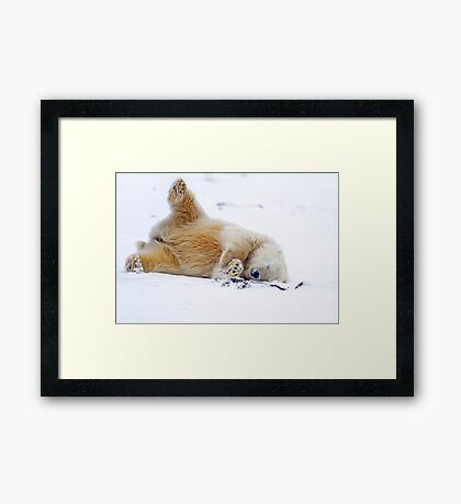 Rolling in the Snow Framed Print