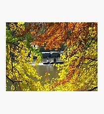 Autumn wreath, Central Park - NYC Photographic Print