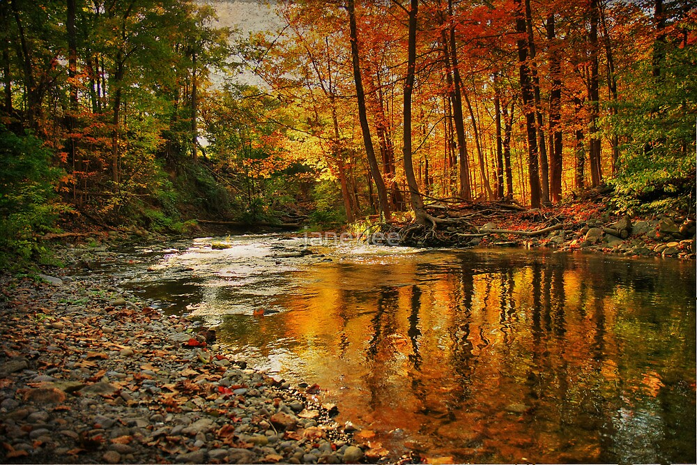 Fall Again by janetlee