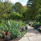A Path Into a Colorful Flower Garden by Paula Betz