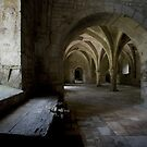 Fontenay Abbey by Lawrence Winder