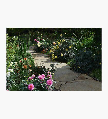 A Favorite Flower Garden Photographic Print