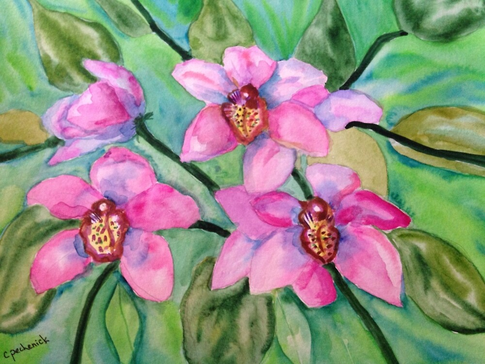 Orchid Love  by Cynthia  Pechenick