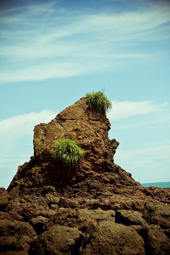 Rocky Crag-1 by ScaredylionFoto