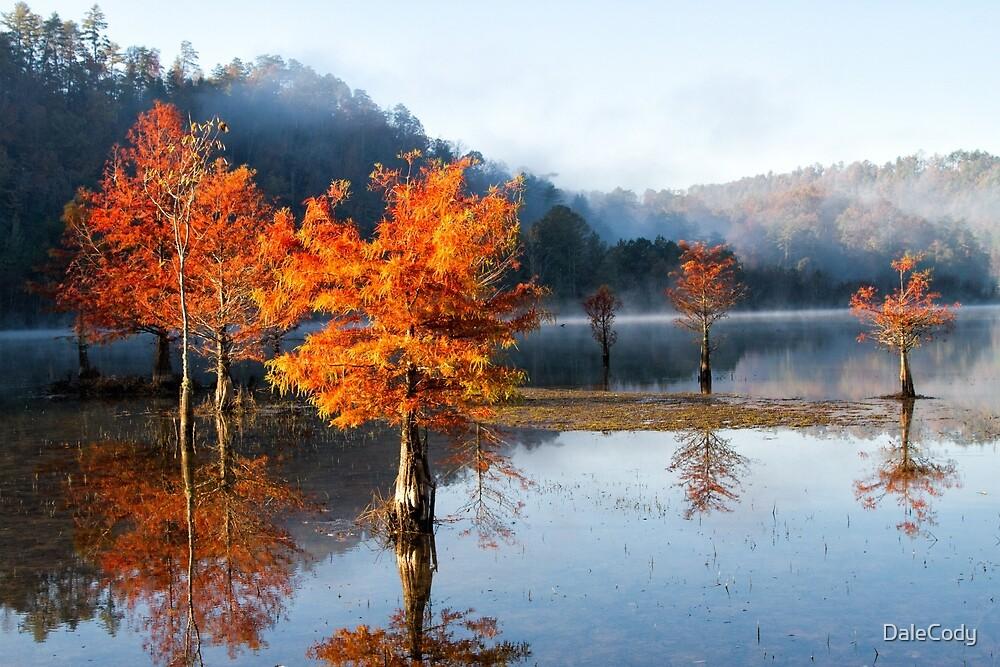 Autumn Meditation by DaleCody